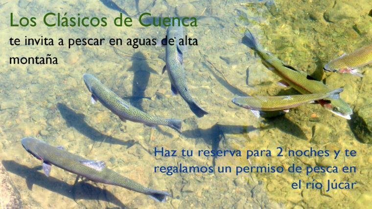 Continúan las actividades de pesca en el Coto de la Torre